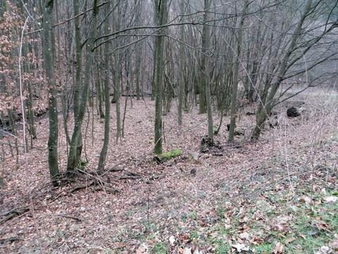 Tajch nad obcou Brehy - plocha nádrže
