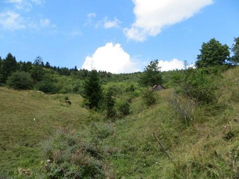 Pohľad na prirodzený prítok a časť usadlosti hore